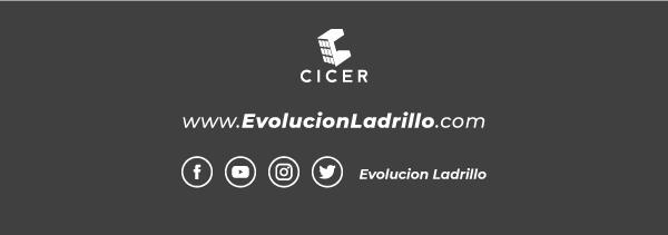 Evolución Ladrillo